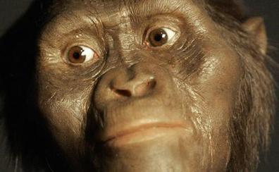 Los humanos hacían herramientas de piedra hace 2,58 millones de años