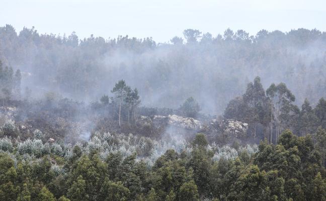 El fuego devora una zona de matorral en Bayas, que sufre su segundo incendio en un mes