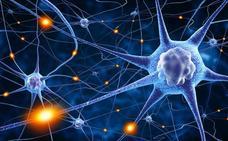 Así descubrimos qué pasa en las neuronas de las personas con autismo