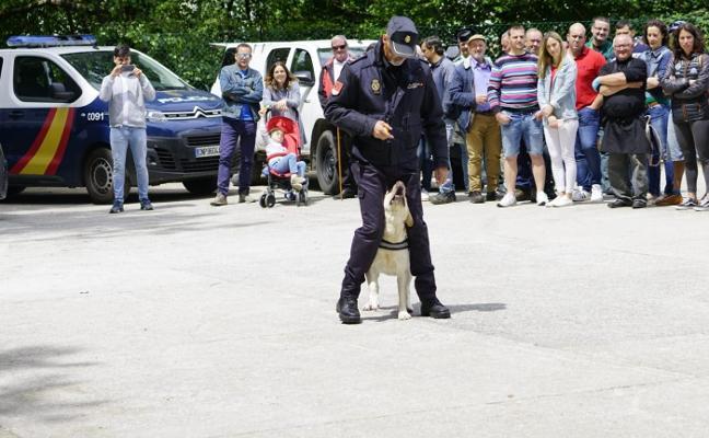 Moal conciencia «con éxito» sobre la labor de los perros en la sociedad