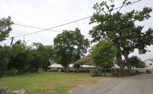 Cangas talará y repondrá los árboles dañados del Robledal de San Antonio
