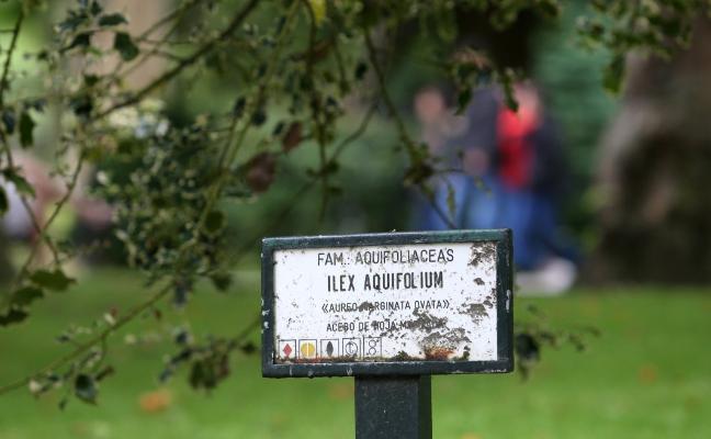 El Ayuntamiento renueva las señales botánicas y de equipamientos del Campo