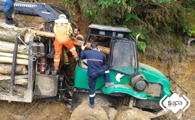 Herido un trabajador al atravesar un tronco la cabina del vehículo