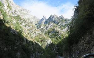 Bosque de Peloño y Foz de los Andamios