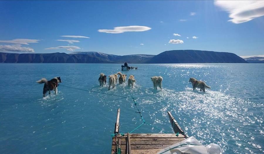 La sobrecogedora foto que retrata el deshielo en Groenlandia