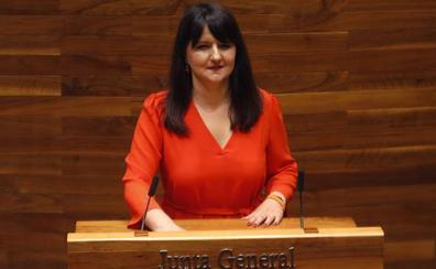 Laura Pérez Macho, portavoz de Ciudadanos en la Junta General