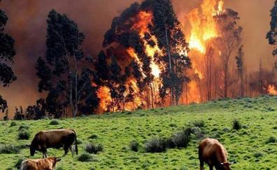 Riesgo alto de incendio mañana en nueve municipios asturianos del suroccidente