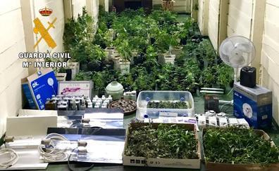 Siete detenidos por tráfico de drogas en el occidente asturiano