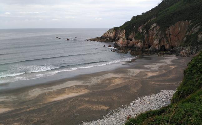 Valdés se queda sin playa para perros este verano al prohibirlos en Sabugo