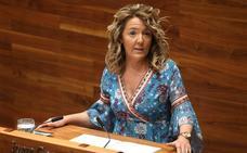 Mallada acusa a Barbón de «continuista» y de carecer de soluciones