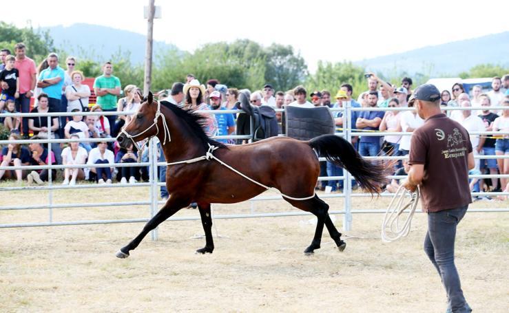 Desafío Horsemanship reúne en Premoño a centenares de asistentes