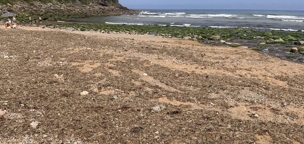 Quejas entre los usuarios de playa España por el estado del arenal