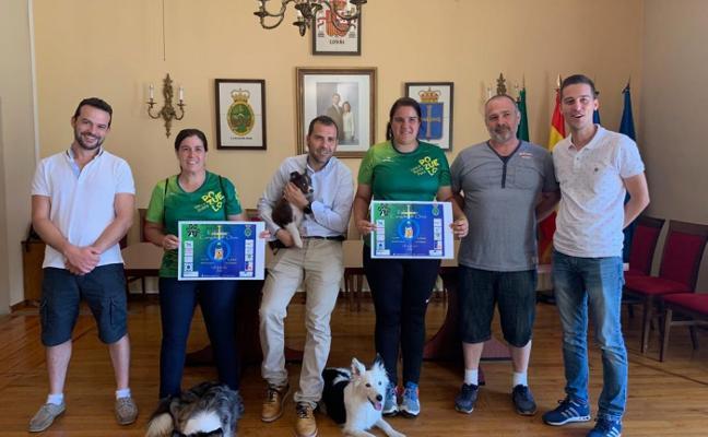 El torneo de agilidad canina regresa a Cangas