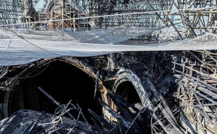 Notre Dame, tres meses después