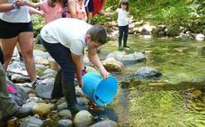 3.500 alevines de salmón y trucha para el río Ponga