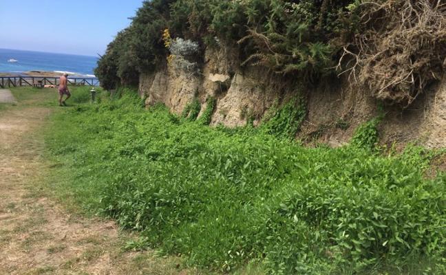 Vecinos de Quintueles exigen soluciones al «abandono» de la playa de La Ñora