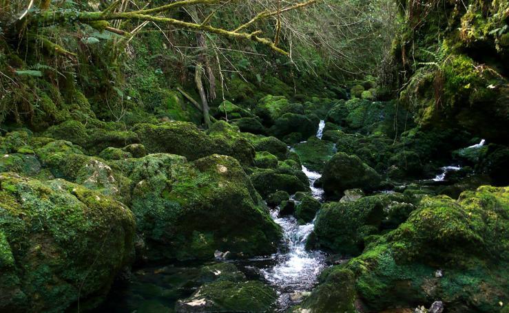 Rincones de Asturias que merece la pena visitar