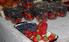 Los frutos rojos se hacen fuertes en Asturias