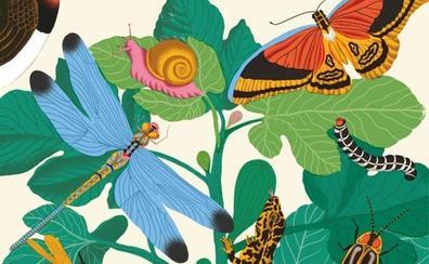 'El lenguaje secreto de la naturaleza', al descubierto