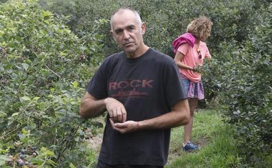 «Ya hemos aprendido que hay frutos rojos en Asturias»