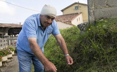 Detenido un hombre en Valdesoto por herir en la cabeza a su vecino con una hoz
