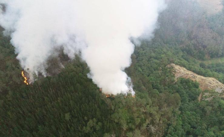 Continúa activo el incendio en el pinar de Pendia, en Boal