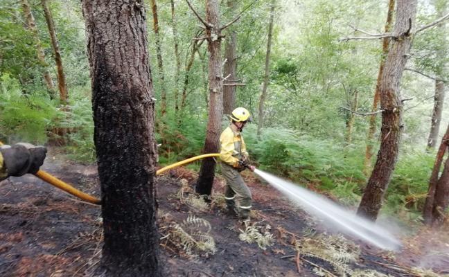 Controlado el incendio forestal que arrasó un pinar en Boal