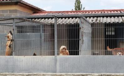 «Necesitamos de todo para el albergue canino, nos lo encontramos vacío»