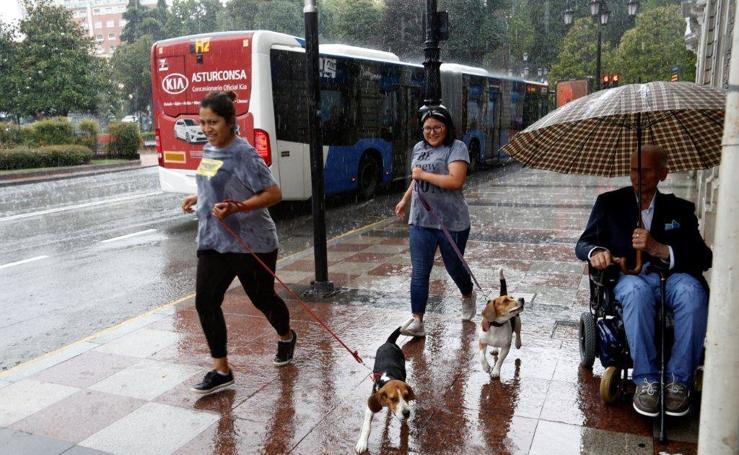 Fuerte tormenta en Oviedo