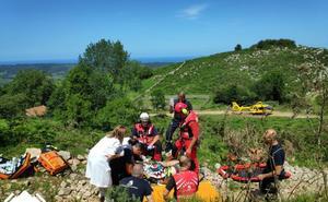 Herido grave un conductor al volcar su quad en un monte de Ribadedeva