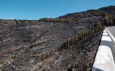 Controlan el incendio en Gran Canaria pero alertan del riesgo por ola de calor