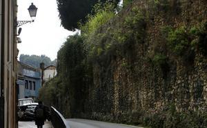 Un «bosque» cubre la muralla medieval de Oviedo