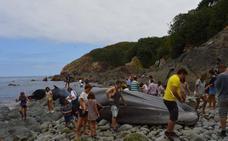 La ballena de 16 metros varada en Tapia, rodeada de flashes