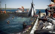 La UE teme que EE UU ponga en peligro sus acuerdos comerciales con el resto del mundo