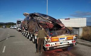 La ballena muerta en Tapia llevaba mucho tiempo sin comer