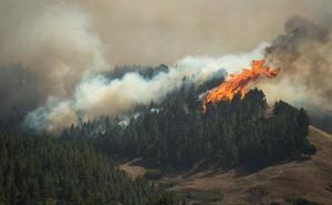 Desolación en Gran Canaria: 9.000 evacuados por un incendio «imparable»