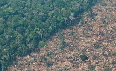 España ofrece ayuda a los países más afectados por los incendios que están asolando la Amazonía