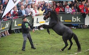 ¿Qué hacer este sábado en Asturias?