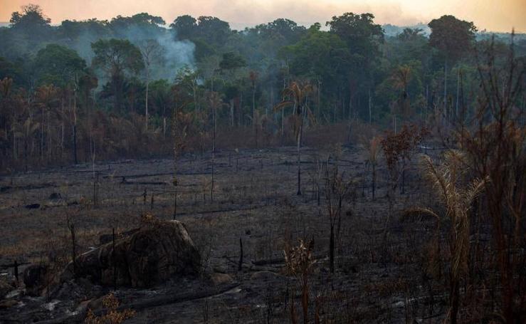 Imágenes desoladoras del incendio del Amazonas