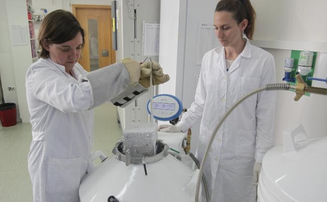 Una empresa asturiana, pionera en la conservación de microorganismos intestinales