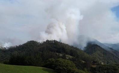 Los bomberos combaten un incendio forestal en Valdés
