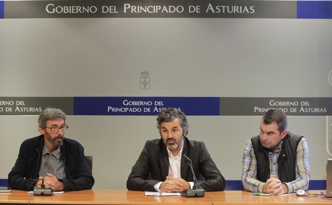 La carne de ternera asturiana ecológica tendrá doble certificación de calidad