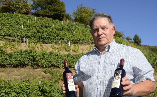 Cangas se convertirá en junio en la capital del vino atlántico