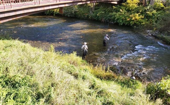 Los pescadores del Open retiran del río Piloña setecientos kilos de basura