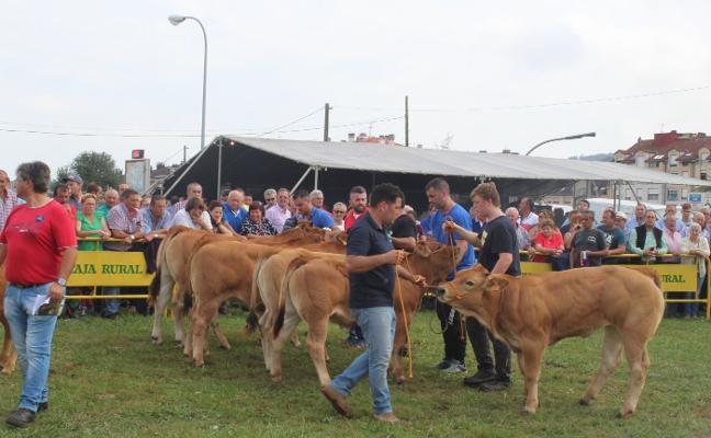 «En el precio de la carne no podemos competir, debemos hacerlo en calidad»