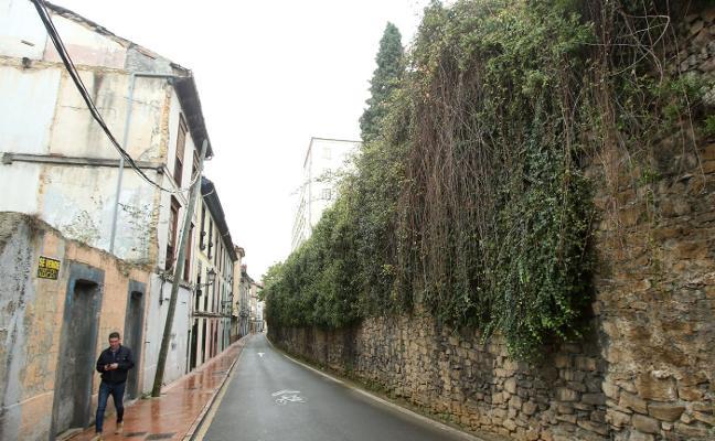 «Hay que ir con cuidado porque la maleza de la muralla puede estar muy incrustada»