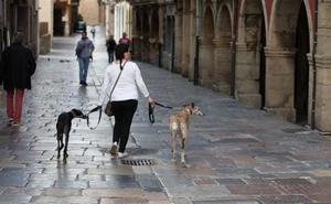 Los perros dividen a los vecinos de Avilés