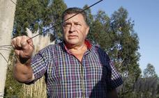 Un alérgico lleva dos semanas esperando que retiren un nido de avispa asiática junto a su casa