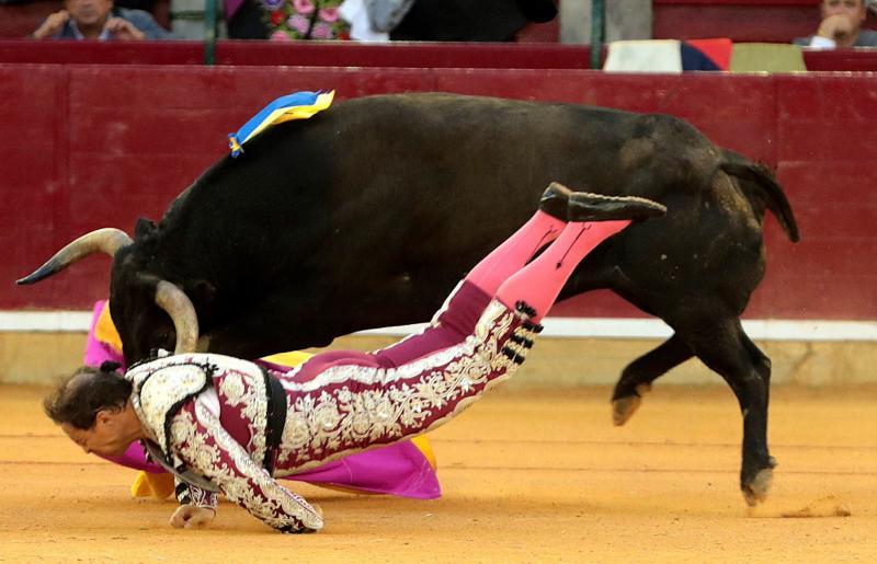 El banderillero Mariano de la Viña, herido de gravedad tras sufrir una violenta cornada en Zaragoza
