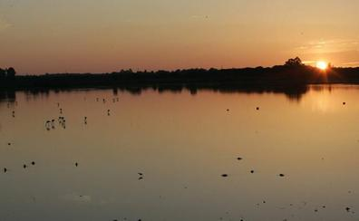 Medio siglo de Doñana, un coto que se convirtió en parque nacional